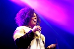 Dianne Reeves@Elbjazz 2014